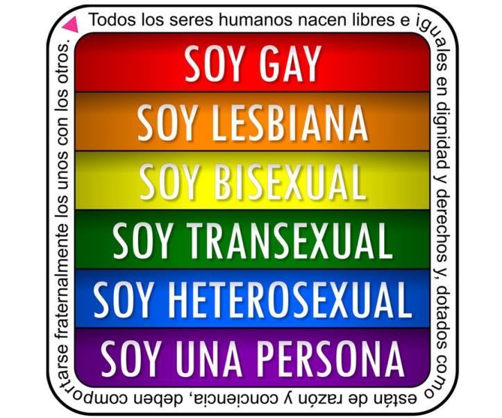 soy-gay